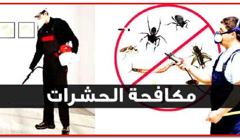 مكافحة الحشرات والقوارض بمواد فعالة